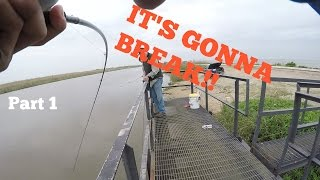 GONNA BREAK ROD!!/Flounder Pounding- Day 1
