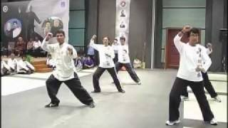Authentic Yang Style Taichi 13 Forms - Fu Sheng Yuan Taichi Academy  - India chapter