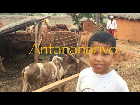 Travel Vlog: Madagascar, welcome to Antananarivo