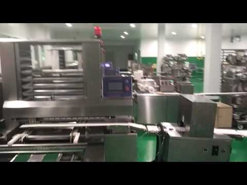 Automatic food production line