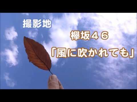 撮影地 欅坂46「風に吹かれても」