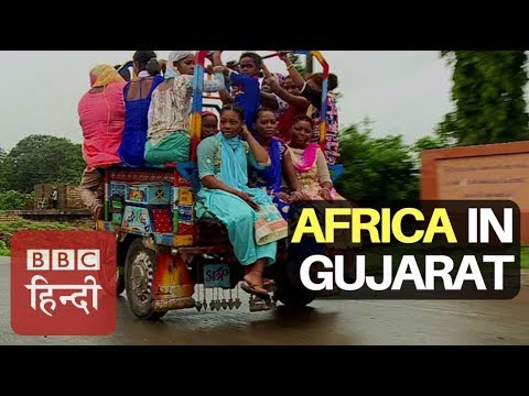 The African Village In Indian State Gujarat : BBC Hindi thumbnail