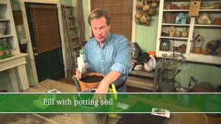 Sowing Radish Seeds in a Container