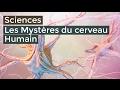 Les mystères du cerveau Humain - Documentaire français 2016 HD