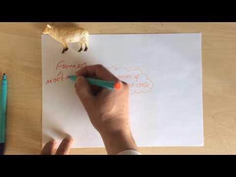 Teacher Talks - The Wall Street Crash - Watch, Revise, Repeat.