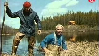 31 1975 Бобры северного края - Подводная одиссея команды Кусто