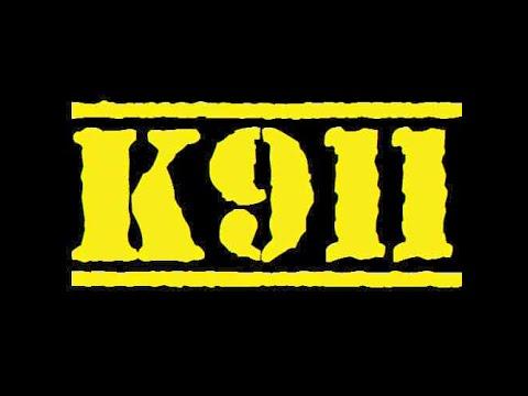 K911 Reviews: Taste Of The Wild Wet Dog Food