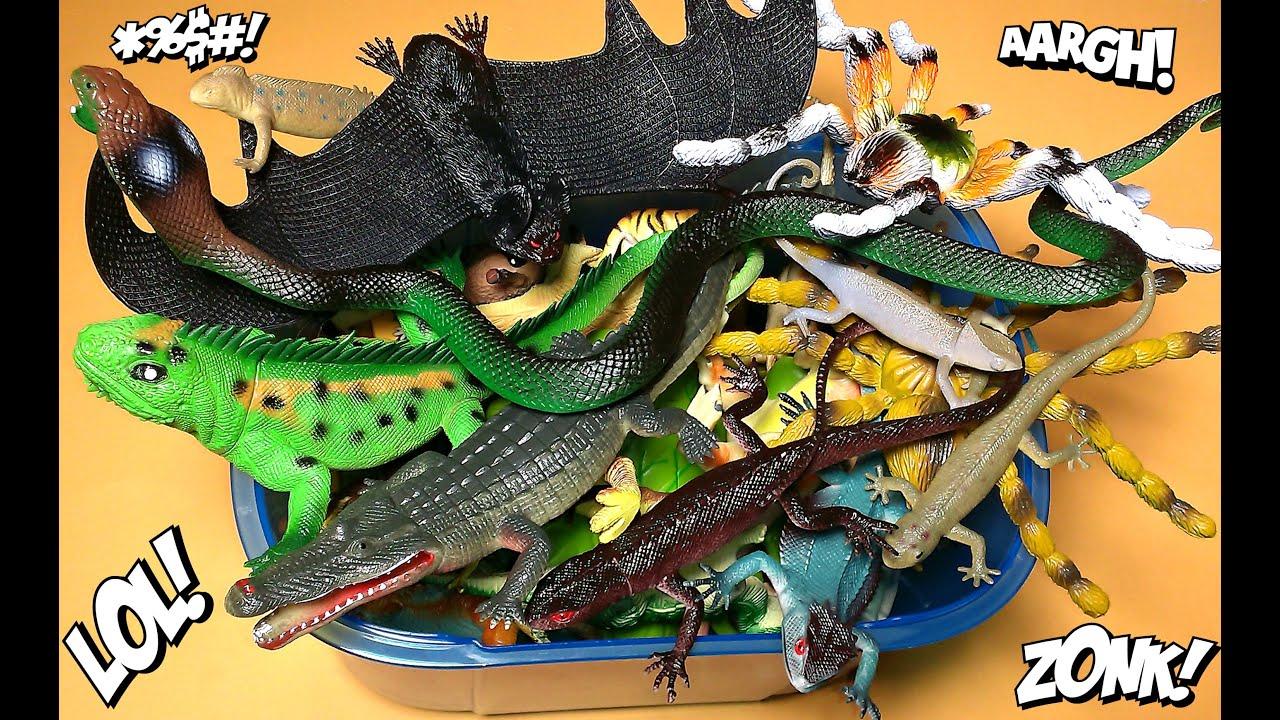 Box Toys Big Snake Crocodile Bat Spiders Reptiles Cameleon Iguanas Lizards Frog & Box Toys Big Snake Crocodile Bat Spiders Reptiles Cameleon ... Aboutintivar.Com
