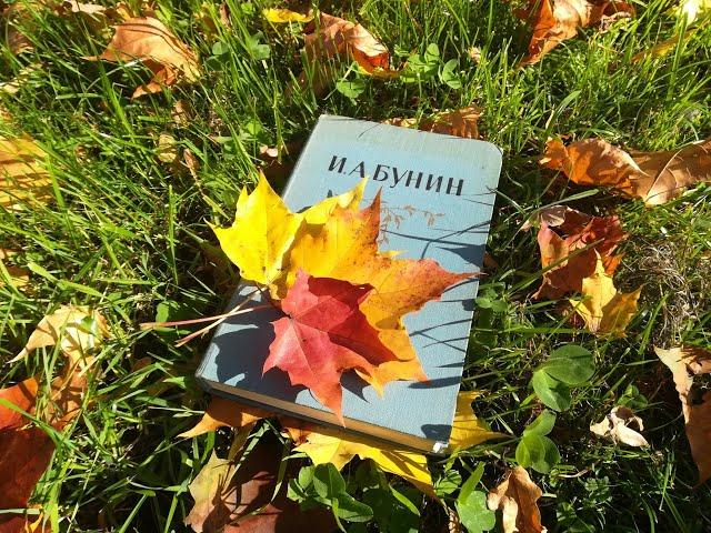 Наталья Новичихина читает произведение «Осыпаются астры в садах...» (Бунин Иван Алексеевич)