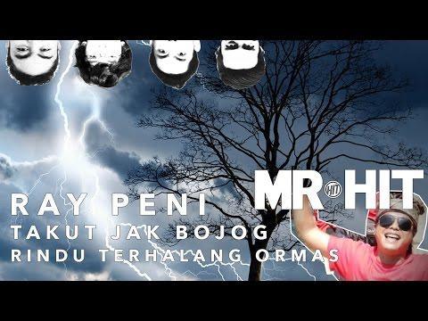 Takut Jak Bojog & Rindu Terhalang Ormas - Ray Peni (MR HIT Cover)
