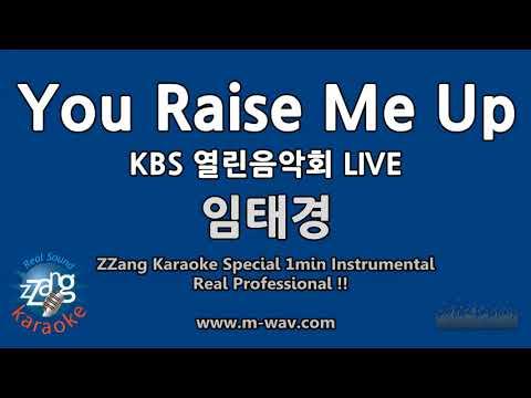 임태경-You Raise Me Up (KBS 열린음악회 LIVE) (1 Minute Instrumental) [ZZang KARAOKE]