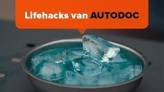 Tips voor autoverzorging - video online