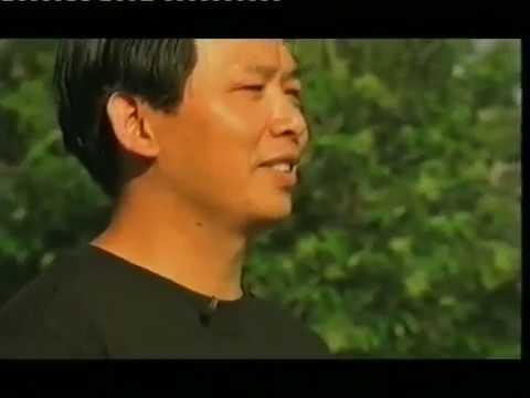 Zhan Zhuang Qi Gong - Lam Kam Chuen - Stand still be fit - El camino de la energia - Día 2