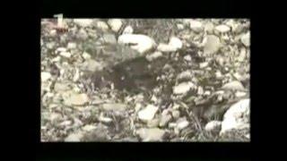 Lufta në Kosovë - Beteja e Koshares - Dokumentar i thyerjes së Kufirit