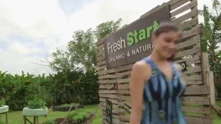 """A """"Fresh Start"""" Organic Farm to Table experience in the Philippines"""