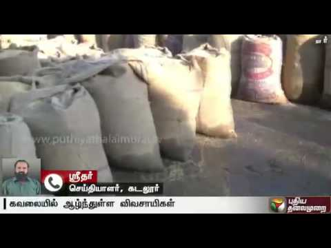 Traders seem to occupy procurement centre forcing farmers to keep their paddy bags out - A report