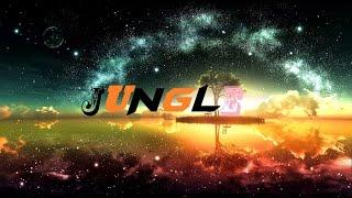 PNL Type Beat | Jungle | {Skywalker Producer}