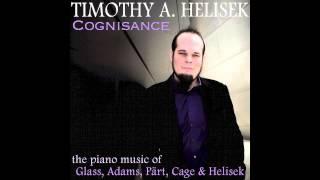 In a Landscape - Timothy A. Helisek (Performer), John Cage (Composer)