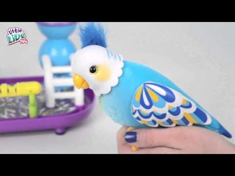 Full Demo Video Little Live Pets Cleverkeet!