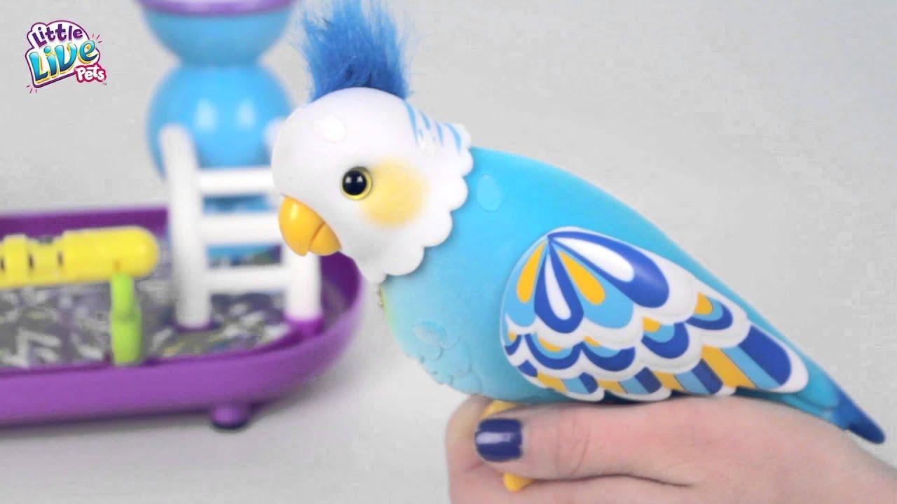 Full Demo Video Little Live Pets Cleverkeet! - YouTube f1dcd2658