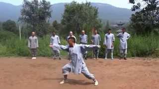 Repeat youtube video Shaolin Kung Fu - Tong Bei Quan