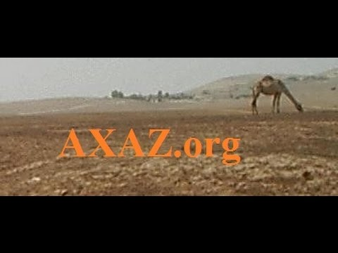 138. Как очень быстро заговорить на иврите. Односложные глаголы группы ПААЛь - продолжение