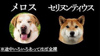 """『走れ犬メロス!』/あの傑作文学を""""全キャラ犬""""で再現してみた"""