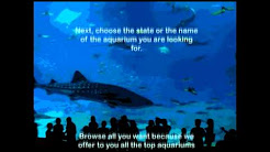 Aquarium Coupons