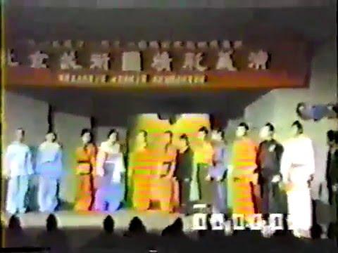 Beijing Wushu Team Demonstration