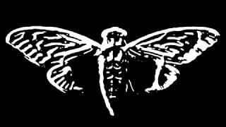 Cicada 3301 Music