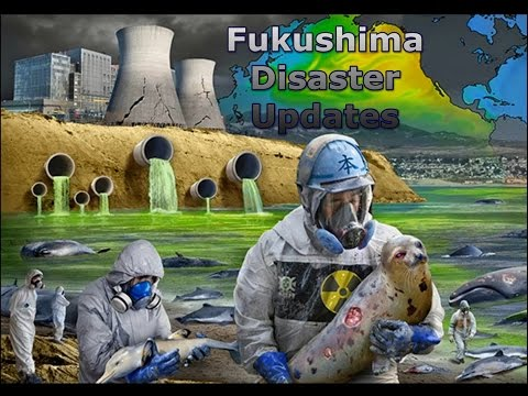 Fukushima, Japan & Nuclear Industry Killing the Pacific Ocean