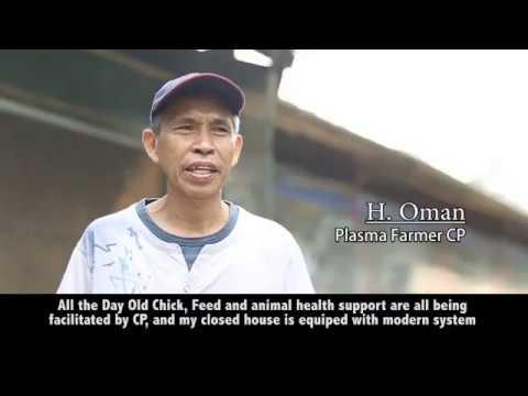 Kemitraan Charoen Pokphand Indonesia Tbk Youtube