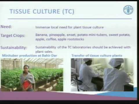 GSSD Expo 2013 - Solution Forum 3 - Agriculture and Food Security