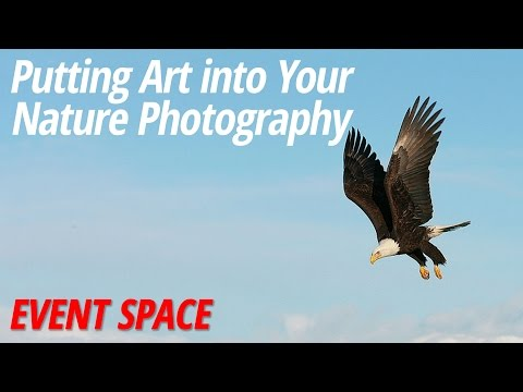 Putting Art into Your Nature Photography with Arthur Morris Mp3