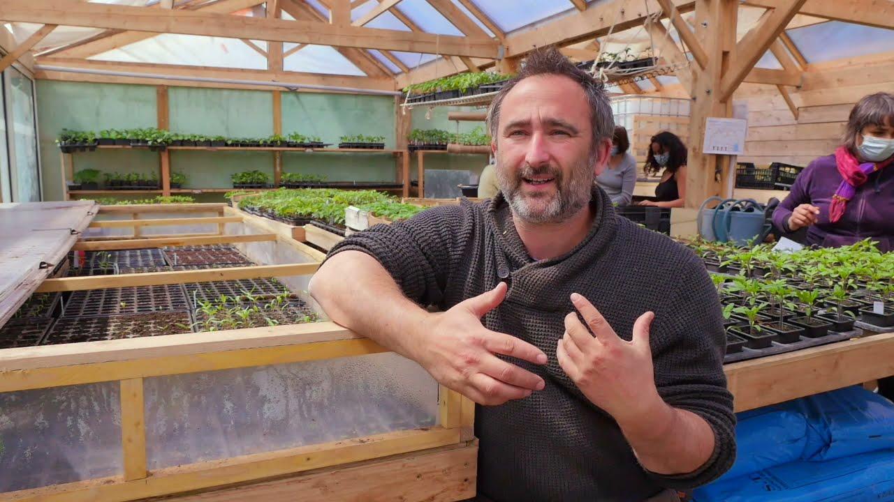Graines de troc : la semence en partage pour essaimer du bon manger pour toutes et tous