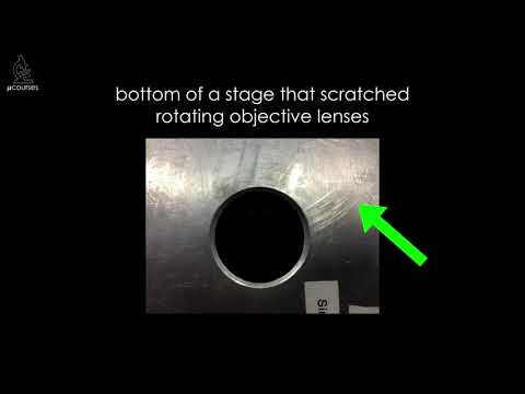 Preventing Objective Lens Damage: Blunt Force Trauma