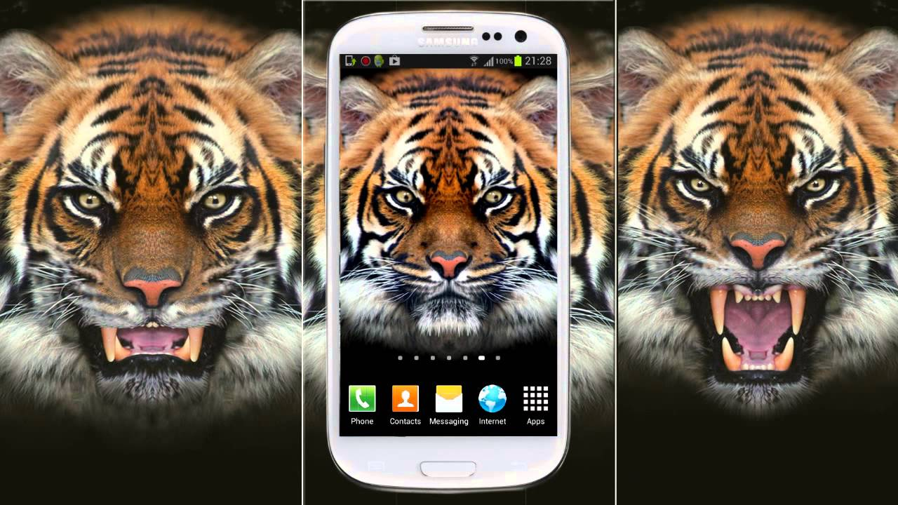 Best Wallpaper Mobile Tiger - maxresdefault  Perfect Image Reference_74882.jpg
