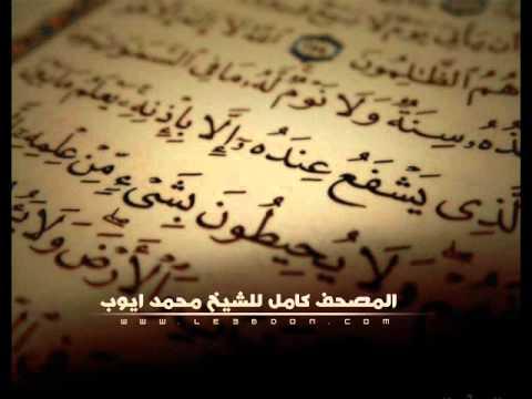 سورة فصلت للشيخ محمد ايوب .. Surat Fussilat For Mohammad Ayub