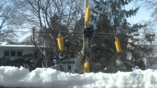 Squirrel Spins On Corn Feeder