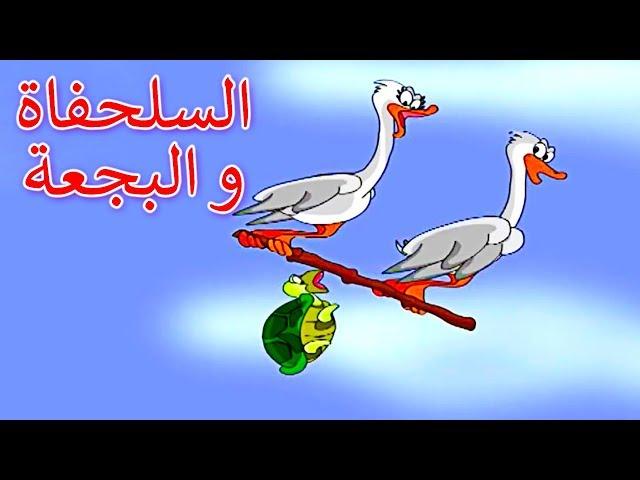السلحفاة و البجعة - قصص اطفال - كرتون اطفال - قصص العربيه - قصص اطفال قبل النوم - Arabic Story