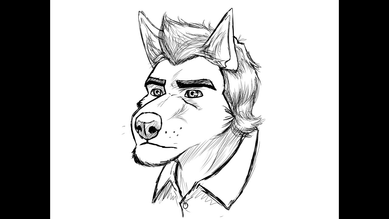 Drawing Mike (timber Wolf)