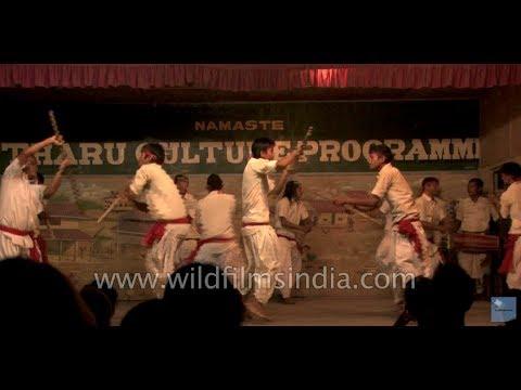 Tharu Community Nepalese Stick Dance