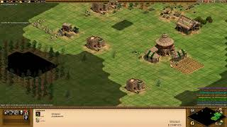 AoE 4v4 Team game wololo
