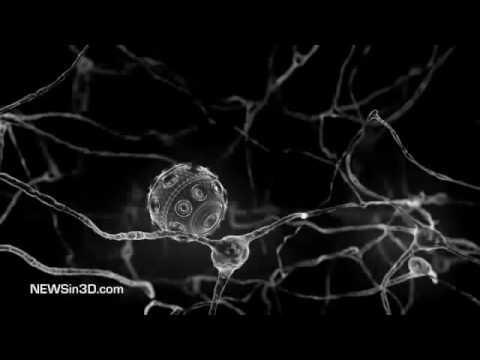 Nano Neurons