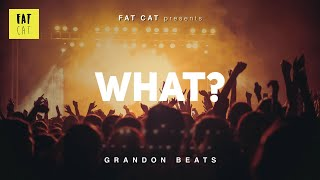 (free) Raw 90s old school boom bap type beat x hip hop instrumental | 'What?' prod by GRANDON BEATS