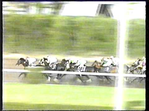 1992 - Gulfstream Park - Breeders' Cup Classic - AP Indy