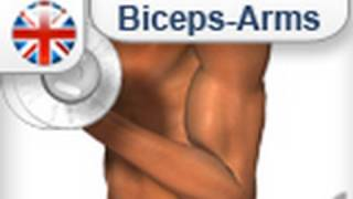 How to develop biceps (for men and women)