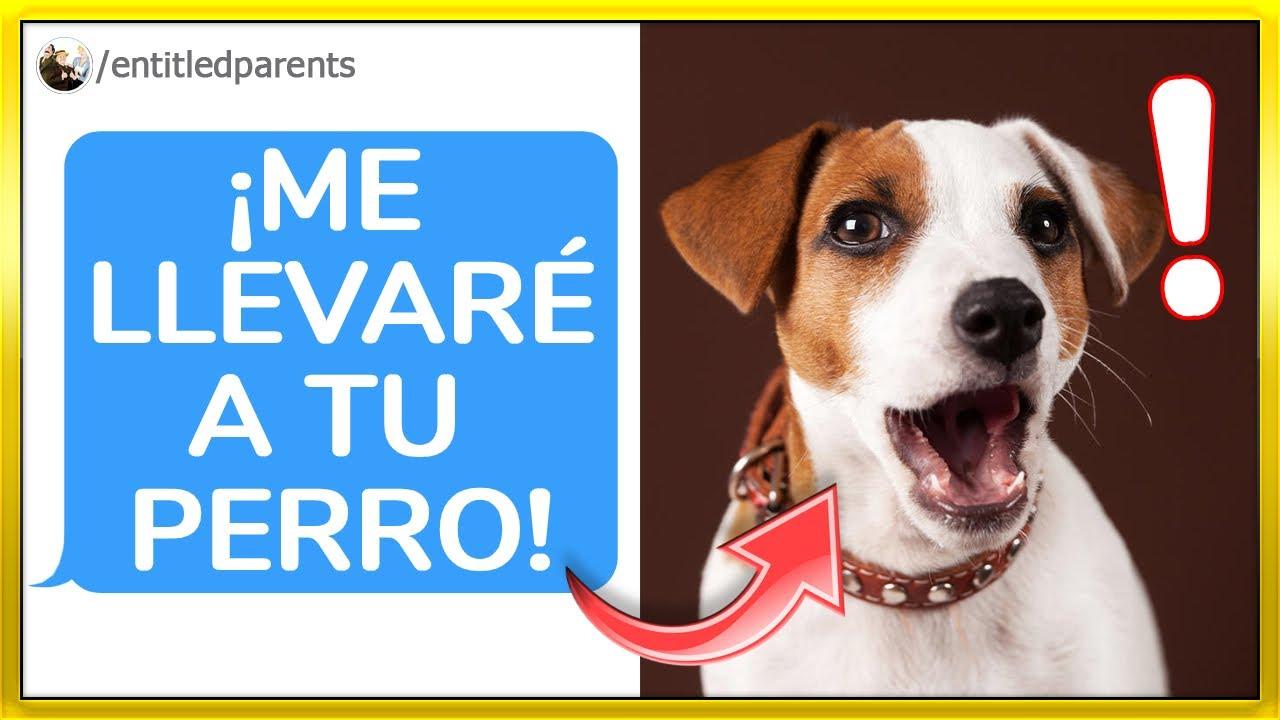 MADRES CON DERECHO: ¡Me quiere ROBAR a mi PERRO! (r/entitledparents)