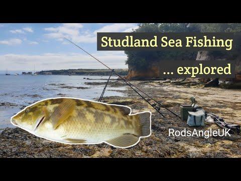 STUDLAND SEA FISHING ...explored
