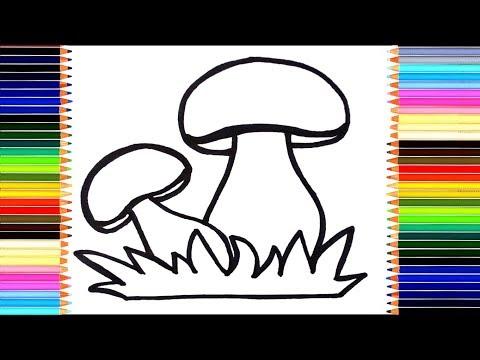 Как нарисовать гриб /  мультик раскраска грибы для детей  / учим цвета